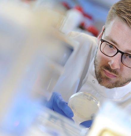 SV Biotech Lab Technician